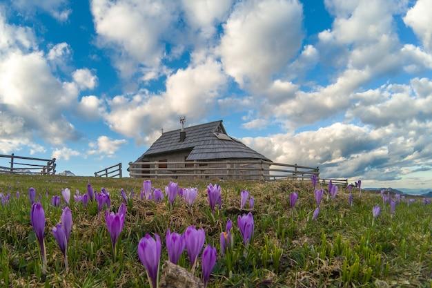 Aldeia de chalés em velika planina slovenija