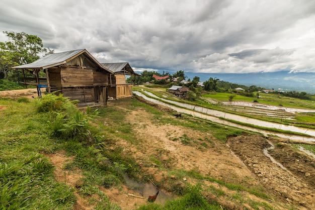 Aldeia tradicional em sulawesi indonésia