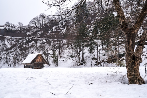 Aldeias de shirakawago e gokayama