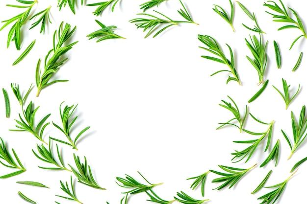 Alecrim fresco isolado no fundo branco e copie o espaço no centro.