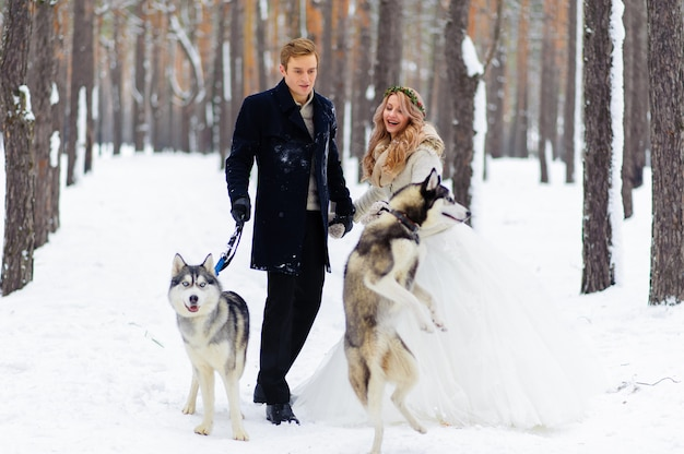 Alegres recém-casados caminha na trilha na floresta de neve com dois cães siberianos.