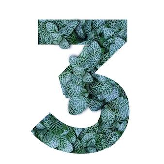 Alfabeto de conceito de natureza de folhas verdes em forma de número três