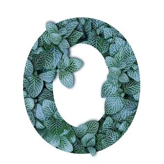 Alfabeto de conceito de natureza de folhas verdes em forma de número zero
