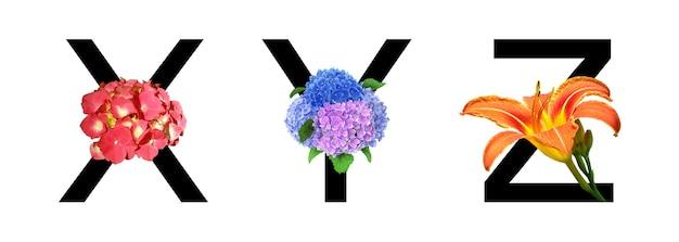 Alfabeto de fonte de flores xyz feito de flores reais para decoração no conceito primavera-verão