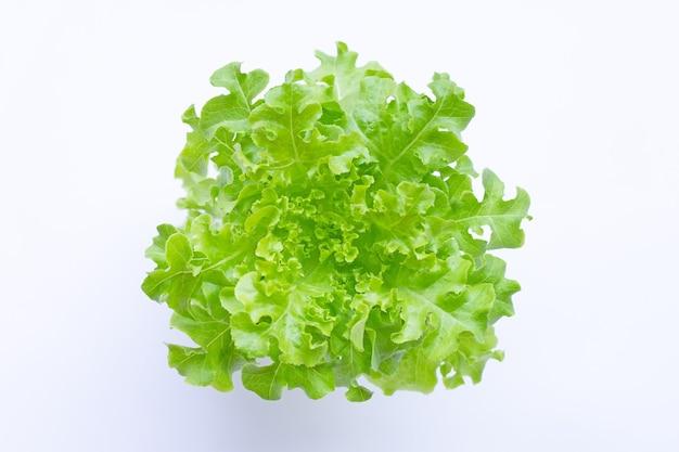 Alface de carvalho verde na superfície branca