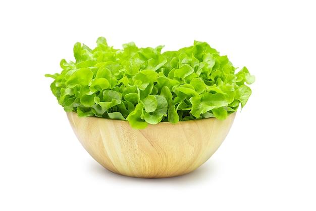 Alface de carvalho verde orgânico cru no fundo branco