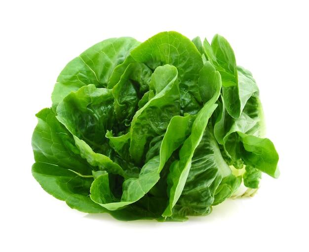 Alface manteiga verde vegetal ou salada isolada no fundo branco