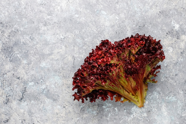 Alface vermelha fresca na mesa de concreto cinza, vista superior