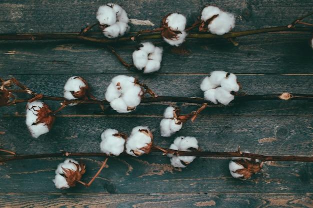 Algodão algodão sobre um fundo cinza