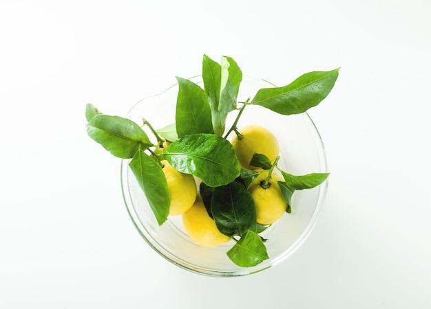 Alguns limões frescos maduros com folhas em uma tigela de vidro grande em cima da mesa.