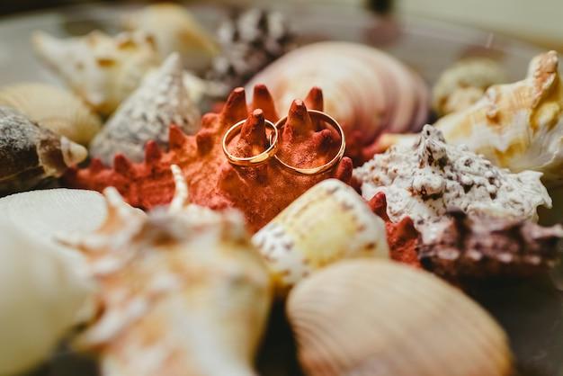 Alianças de casamento cercadas por seashells, moldadas no tema marítimo.