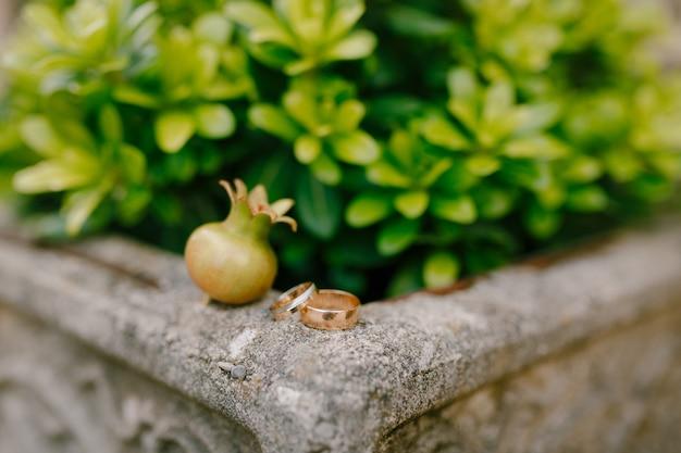 Alianças de casamento da noiva e do noivo em uma borda de pedra contra um fundo de plantas verdes
