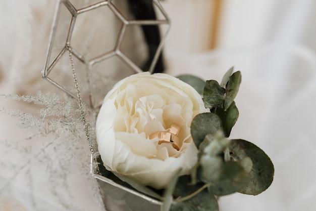 Alianças de casamento dentro de uma flor de peônia