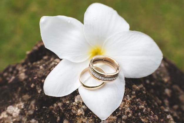 Alianças de casamento elegantes com diamantes. flor havaiana.