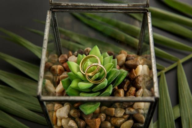 Alianças de casamento em flor verde na caixa do anel de vidro. conceito de casamento rústico ou verde
