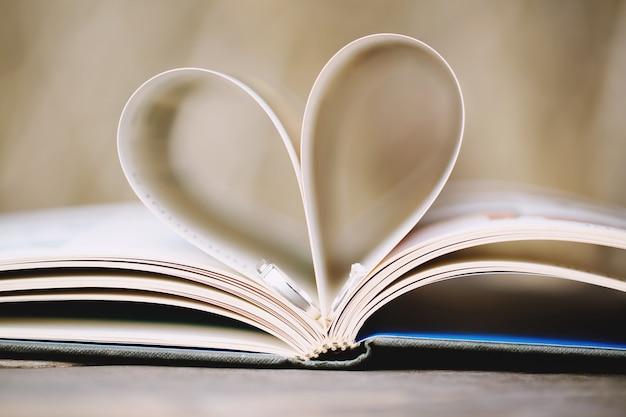 Alianças de casamento em livro aberto