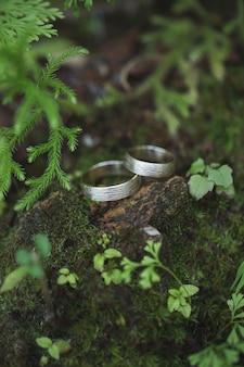 Alianças de casamento em musgo verde na floresta
