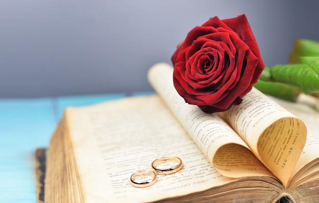 Alianças de casamento em um casamento com uma rosa vermelha em um livro antigo