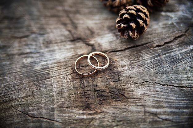 Alianças de casamento em um tronco de árvore, mostrando os anéis da árvore