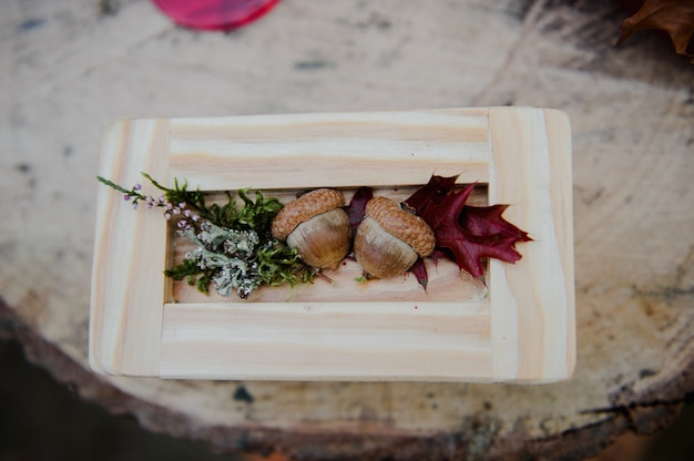 Alianças de casamento em uma caixa de madeira com bolotas. cerimônia de casamento. anéis no coto.