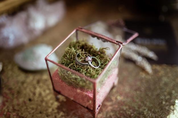 Alianças de casamento em uma caixa de vidro