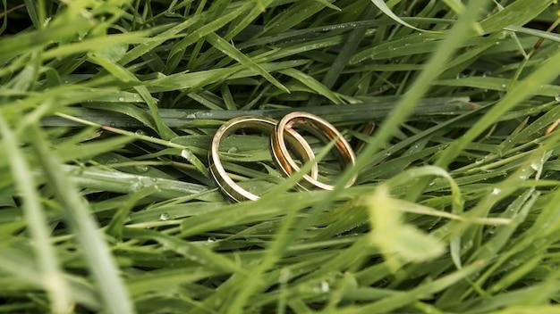 Alianças de casamento na grama