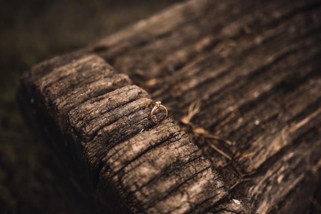 Alianças de noiva e noivo em fundo de madeira