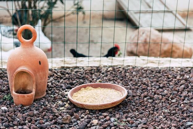 Alimentador de galinhas em uma fazenda.