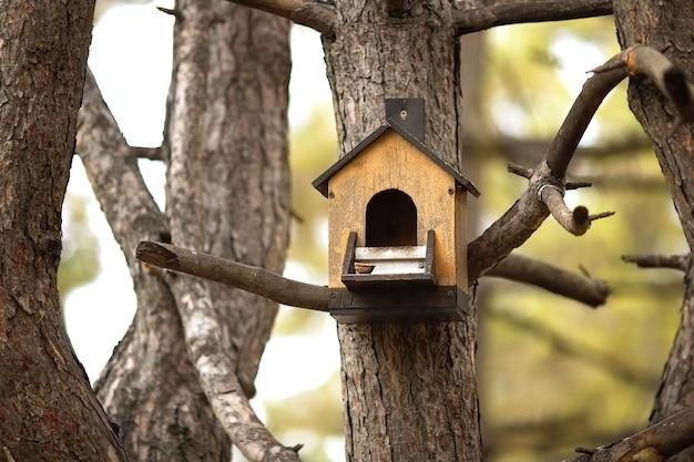 Alimentador de pássaros e proteína pesam em uma árvore no parque