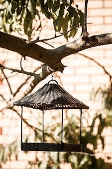 Alimentador de pássaros pendurado em um galho de árvore com folhas verdes