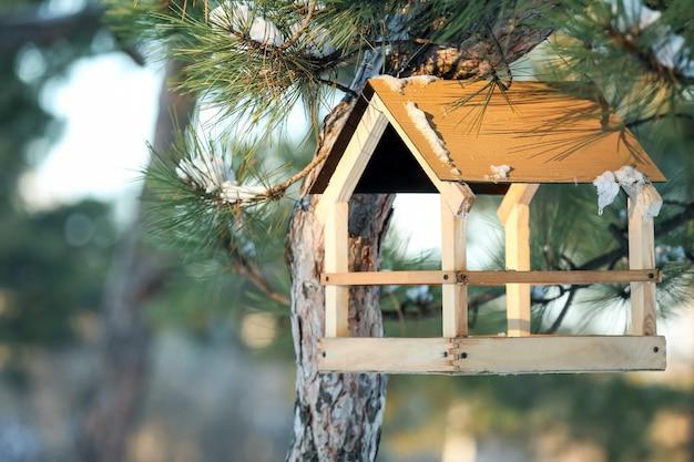 Alimentador de pássaros pendurado em um pinheiro na floresta