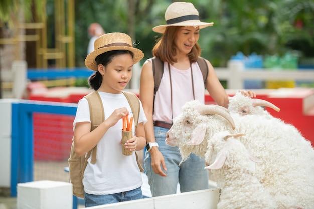 Alimentando a cabra. filha e mãe asiática alimentam uma cabra branca com a mão na fazenda de animais.