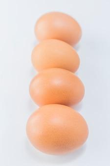 Alimento pato natureza painel natural proteína