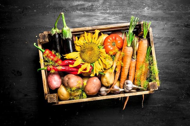 Alimentos orgânicos legumes frescos em uma velha caixa de madeira no quadro negro