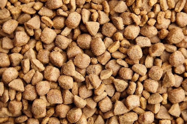 Alimentos secos para cães e gatos. fundo de refeição de animal de estimação
