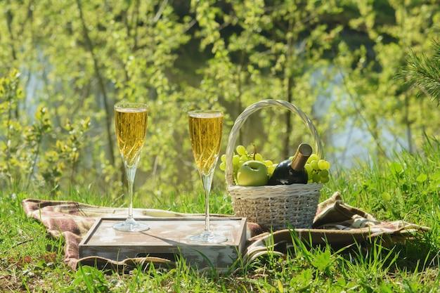Almoço romântico no cobertor na floresta vista lateral