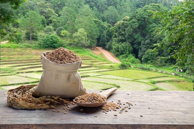 Almofada em um saco e colher de pau com o campo de arroz em terraços