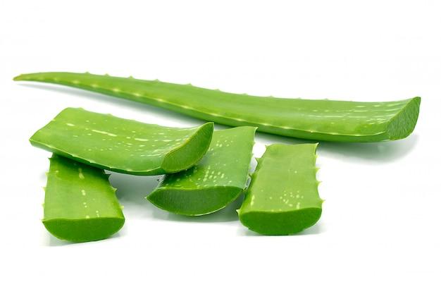 Aloe vera fatiado isolado