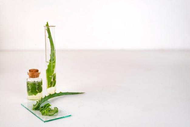 Aloe vera, óleo, em, garrafa vidro, com, cortado, de, aloe vera, gel
