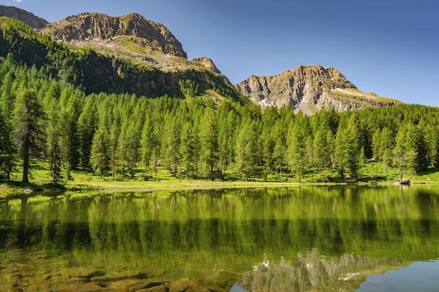 Alpes idílicos com floresta verde, lago e montanha