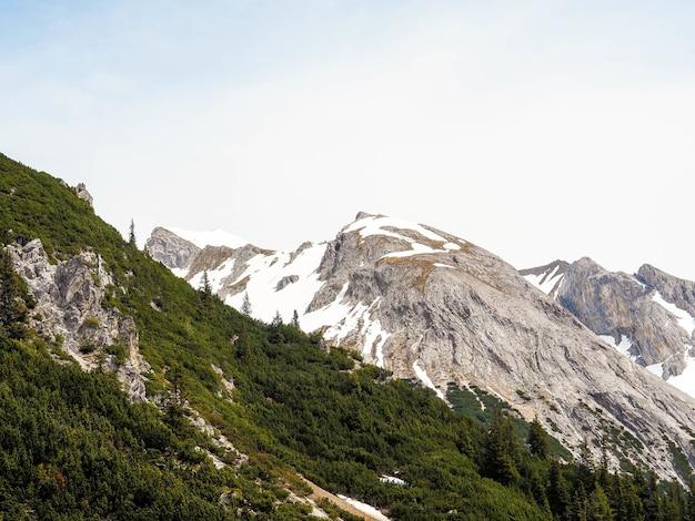 Alpes majestosos durante o inverno com árvores verdes e picos cobertos de neve