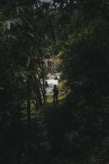 Alpinista de mulher explorando a selva em sa pa vietnam