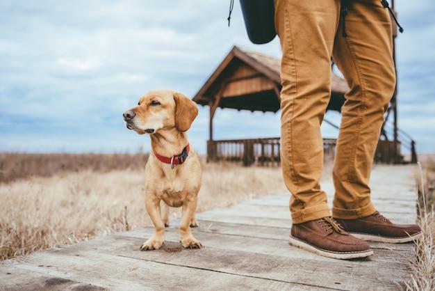 Alpinista e cachorro em pé em uma passarela de madeira