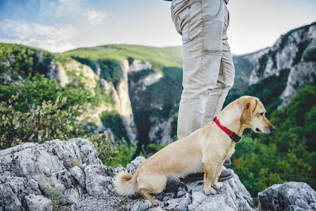 Alpinista e seu cachorro em pé no topo da montanha