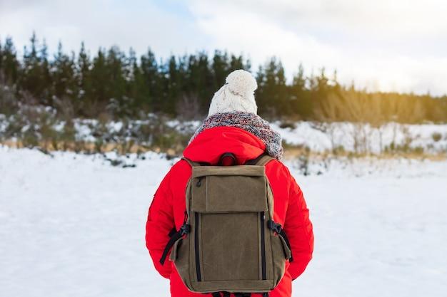 Alpinista especialista admirando a bela paisagem de montanhas nevadas. conceito de esporte, paz e aventura.