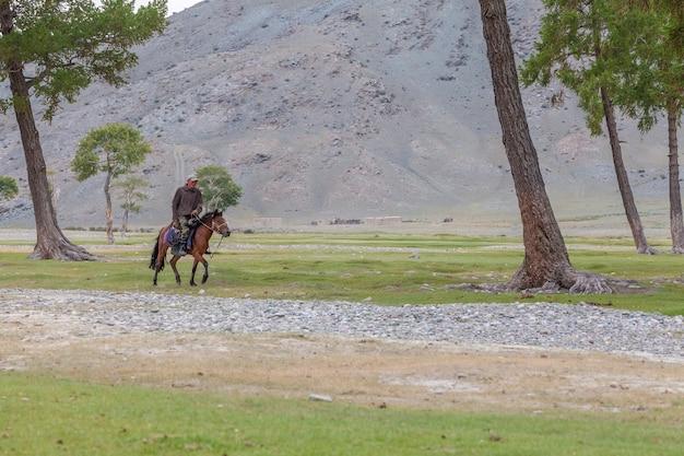 Altai, mongólia - 14 de junho de 2017: um pastor nômade cansado monta um cavalo para casa. altai da mongólia