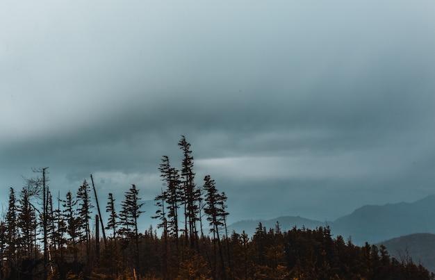 Altas montanhas rochosas e colinas cobertas de nevoeiro natural durante o inverno