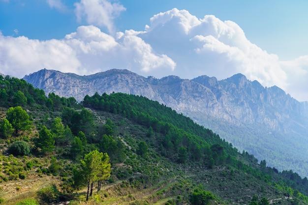 Altas montanhas rochosas e paisagem verde arborizada com grandes nuvens brancas.
