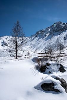 Altas montanhas sob a neve no inverno
