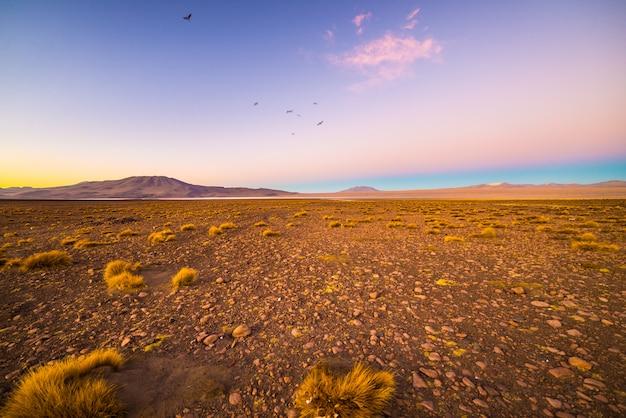 Altiplano árido de alta altitude dos andes